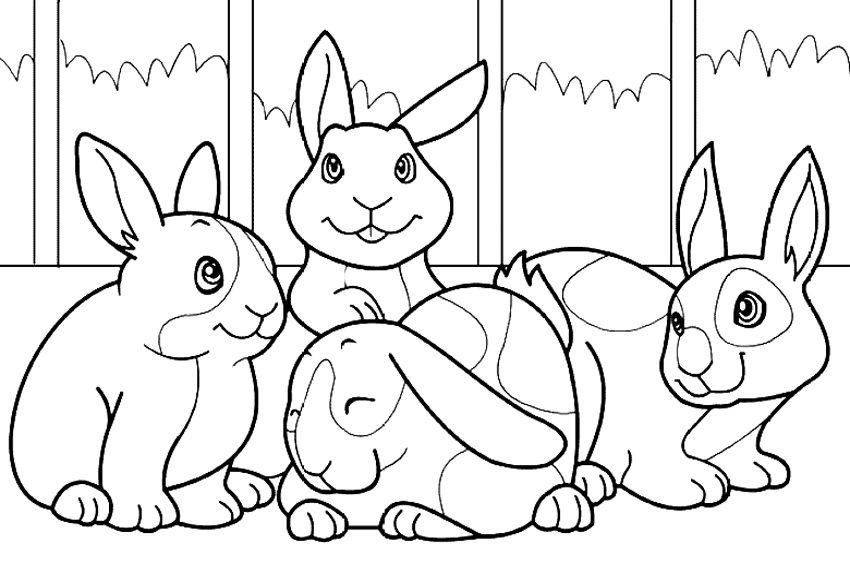 Galería De Imágenes Dibujos De Conejos Para Colorear