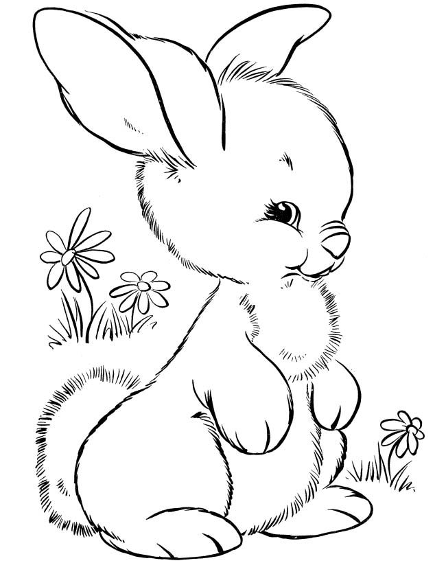 its happy bunny coloring pages - photo#2